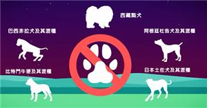 Prohibition of Obtaining, Raising, Breeding or Importing Certain Species of Dogs and Animals