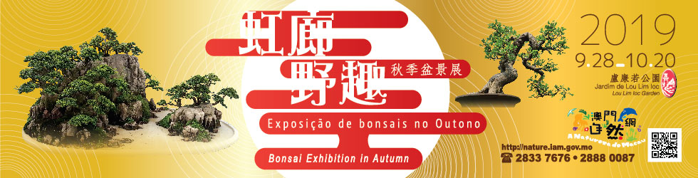 """Green Fun in Rainbow Corridor"" - Bonsai Exhibition in Autumn 2019"
