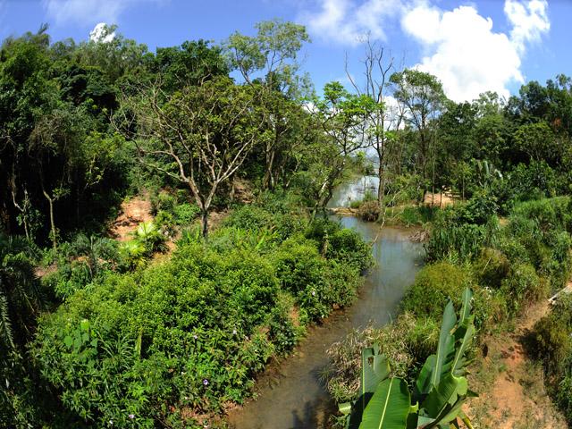 Wetland in Alto de Coloane