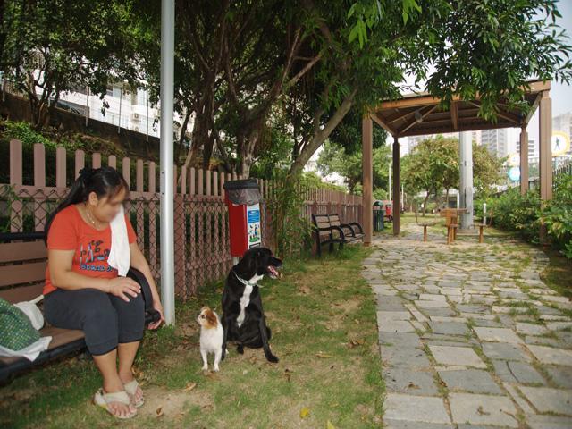 Dog Park in Estrada do Reservatório