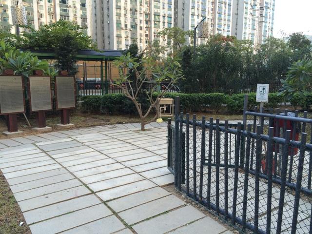 Dog Park in Central da Taipa Park (Rua de Seng Tou)