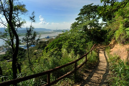 Coloane Fitness Trail