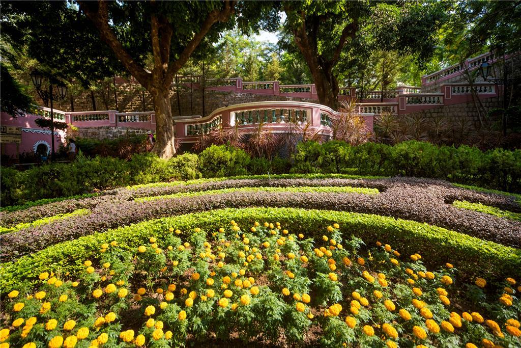 S. Francisco Garden