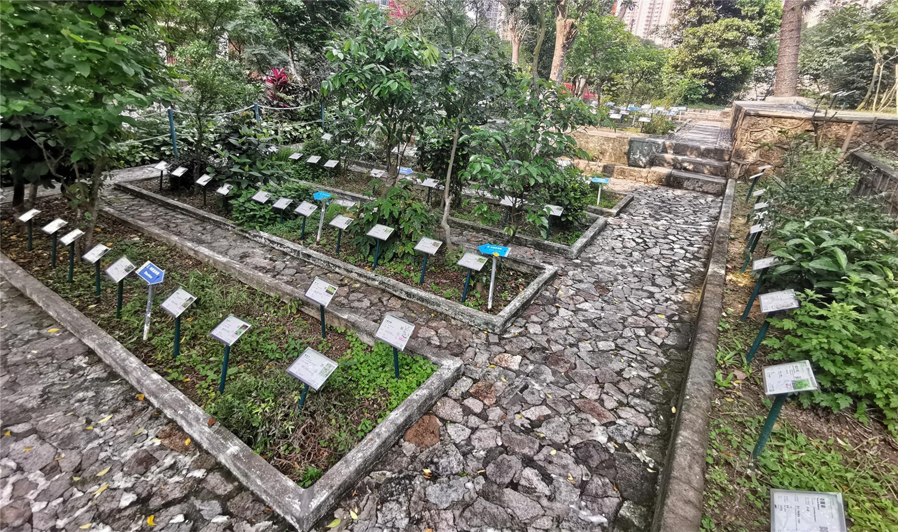 Garden of Medicinal Plants