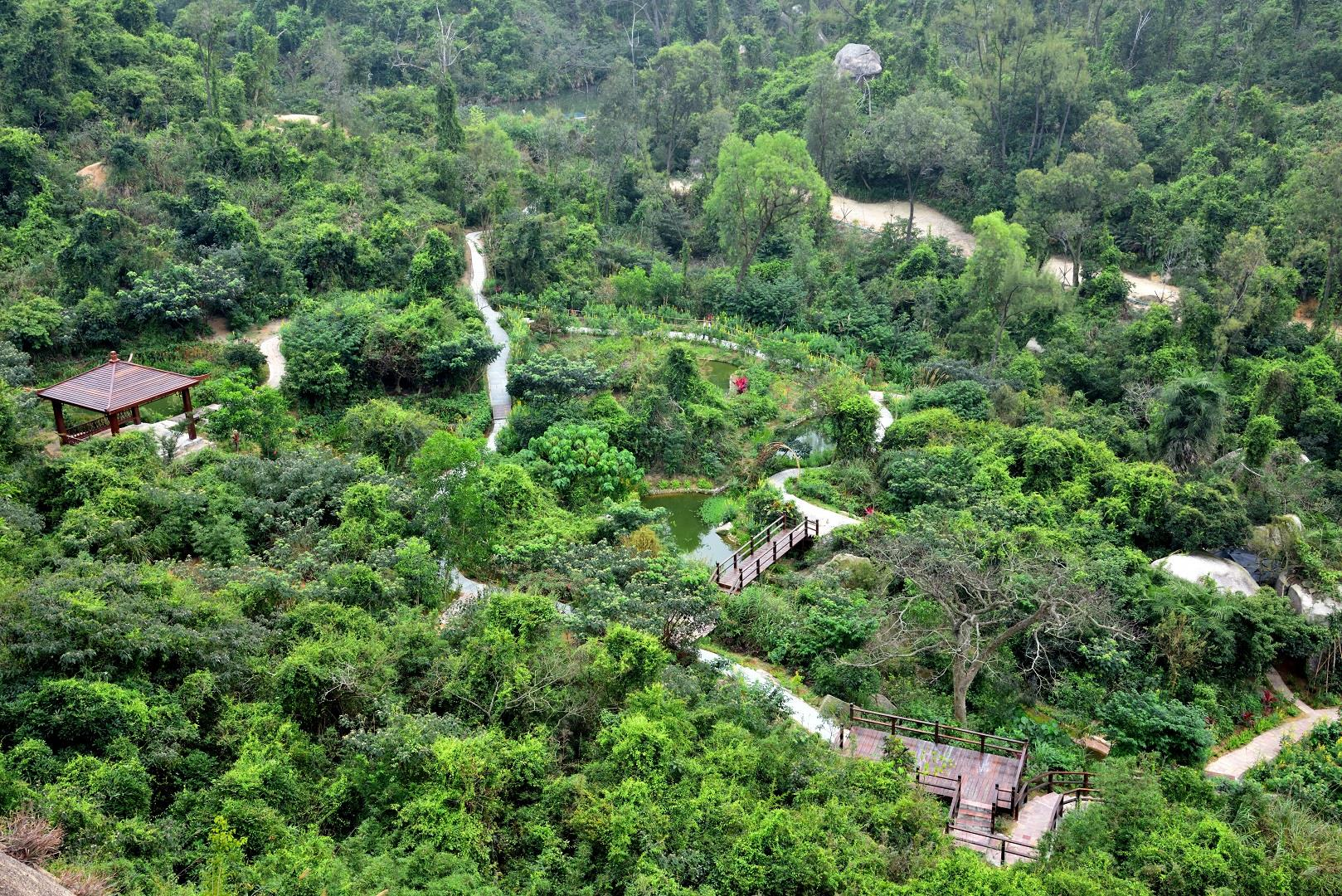 Wetland in Seac Pai Van