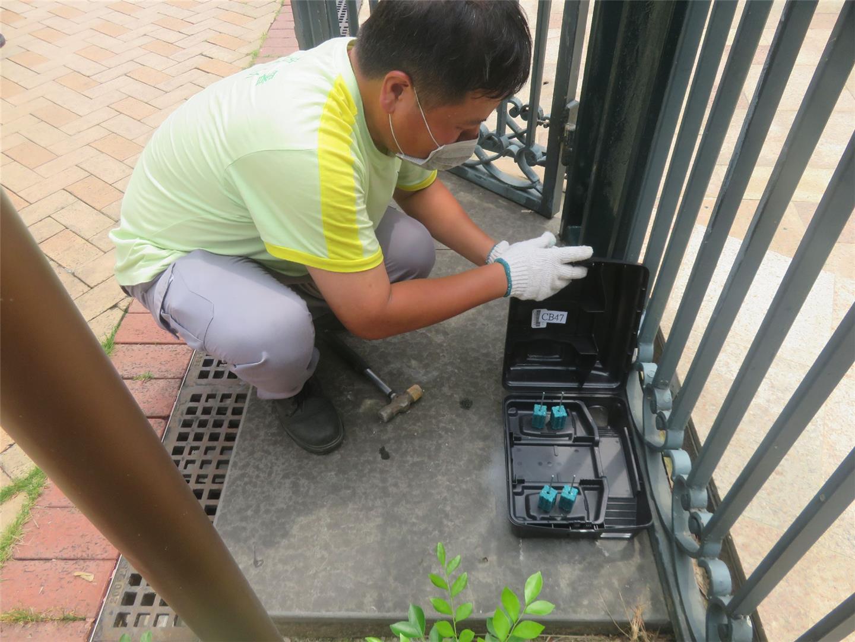 市政署持续开展防治鼠患工作