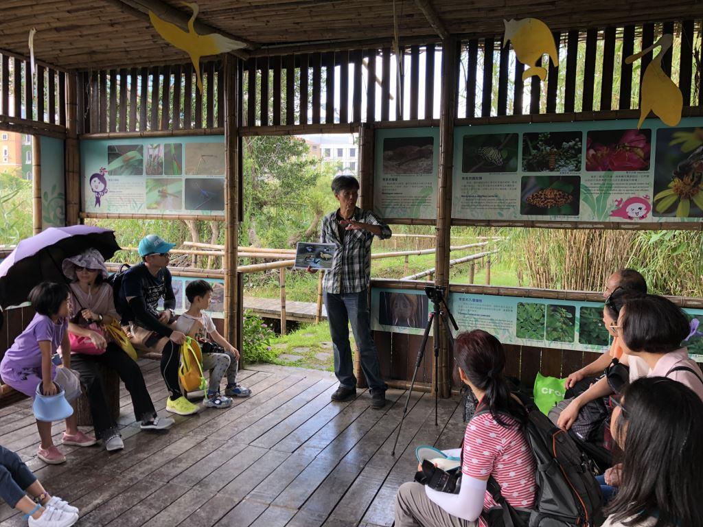 「迁鸟千寻-湿地观鸟」活动接受报名