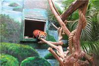 Conservation ambassador of red pandas